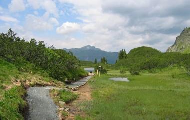 projekt-landschaftspflege-alpenschutzverband